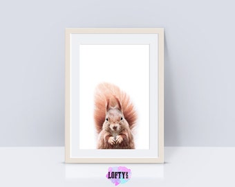 Squirrel Print, Nursery Woodland, Nursery Forest Art, Forest Animals, Baby Forest Decor, Squirrel Photo, Nursery Decor, Digital Download