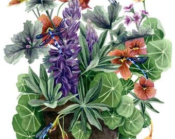 Fine Art Print of Original Watercolor Painting - Garden Visitors