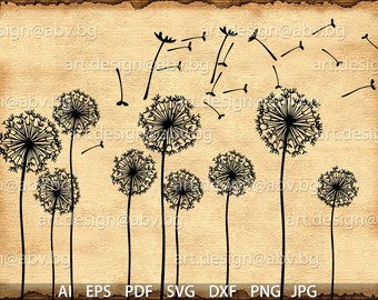 Vector Flower /Taraxacum/, dandelion, AI, eps, pdf, svg, dxf, PNG, jpg Image Graphic Digital Download Artwork, graphical, discount coupons