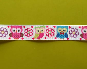 7/8 22 mm Owls with Pink Flowers Grosgrain Ribbon