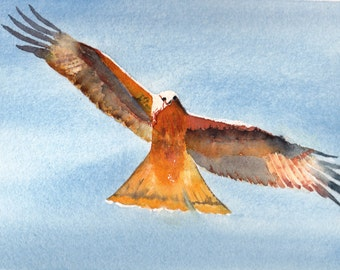 Father's Day Cards Red Kite Cards 4 Bird Lovers Cards Encouragement Cards Birthday Cards for Him Card for Dad  Good Luck Cards.