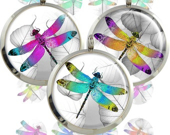 Dragonflies  Digital Collage Sheet  1inch/1.25inch/1.5inch  size Circle Images for pendants