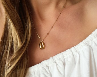 Vermeil Gold shell Necklace