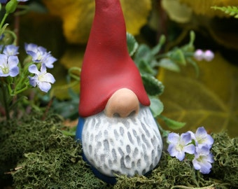 Nosey Little Garden Gnome - READY TO SHIP Now - Funny Gnome - Terrarium Decor