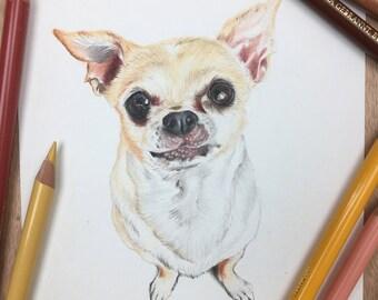 5x7 Custom Pet Portrait / Custom Dog Portrait / Colored Pencil Pet Portrait / Custom Pet Portrait Illustration