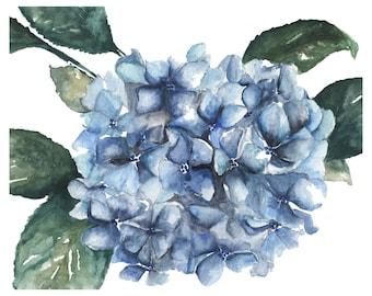 Hydrangea Watercolor Print