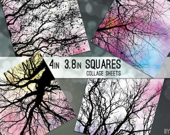 """Tree Branches Digital Collage Sheet 3.8 Inch and 4"""" x 4"""" Square C0013 for Gift Tags Coasters Magnets Scrapbooking JPG"""