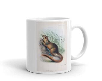 Coffee Mug - Ceramic - Treeshrew Coffee Mug