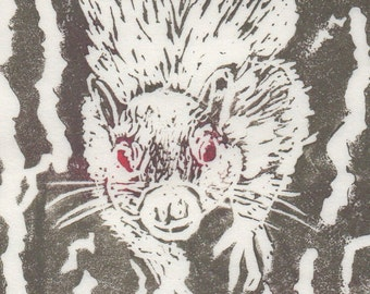 Legendary White Squirrel Linocut - Handprinted Toronto White Squirrel of Trinity Bellwoods Park Print