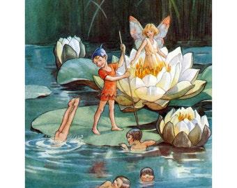 Flower Fairies Print - Water Lily Fairies - Repro Margaret Tarrant