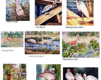 Birds of Florida - YOU Pick One 5x7 note card watercolor print  watercolorNmore handmade Your CHOICE