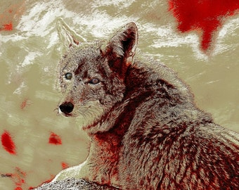 Southwestern Coyote Art, Native American Totem Animal, Textured Red, Wilderness Wildlife, Home Decor, Wall Hanging, Giclee Print, 8 x 10