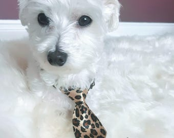Small Dog Small Cat Collar Necktie Accessory/Leopard Print