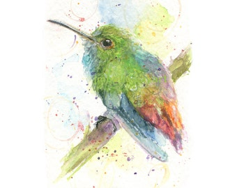 Watercolor Hummingbird, Hummingbird Print, Costa Rican Hummingbird Print, Colorful Bird Print