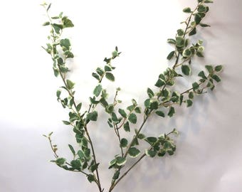"Artificial Euonymus Fortunei ""Silver Queen"" Stem
