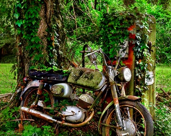 Motorcycle & Gas Pump in the Woods Photograph