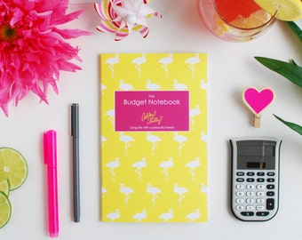 Ashley Shelly Budget Notebook: Flamingos Cover (slightly imperfect)