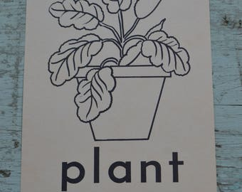 Vintage Ephemera 1950s Flash Cards Learning Picture - Plant