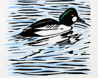 Goldeneye Duck Linocut Print Hand-coloured Limited Edition
