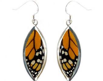 Real Butterfly Wing Sterling Silver Earrings - MonarchTop Wing Sterling Silver