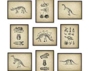 Dinosaur Print Set Of 9 - Dinosaur Skeleton - Prehistoric - Geology Student - Paleontology - Fossil Book Plate Illustration - Boys Bedroom
