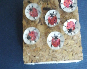 sparkly lady bug pushpins