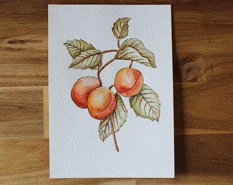 5x7 Peach Watercolor Painting