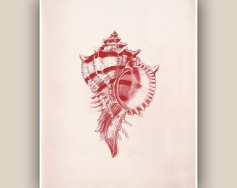 Purple rock snail Print in garnet red, Seashell  Print,  Vintage Murex sea shell print,  Nautical art,  Marine Life Art, Coastal Living,