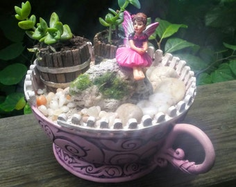 Miniature Fairy Garden Kit w/ Succulent Cuttings, Pink Teacup Container Planter, white picket fence Tea Cup