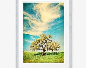 Oak Tree Photo, Oak Tree Photograph, Oak Tree Print, Vintage Oak Tree, Retro Oak Tree, Oak Tree, Retro Landscape, Vintage Landscape