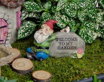 Miniature Gnome Fairy Garden ...