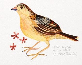Woodland bird, Gift for her, Watercolor bird art, Bird illustration, Yellow brown bunting, Home wall decor, Bird drawing, Nursery art, Gift