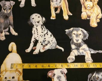 Dogs on black fabric by half yard, dog fabric, printed quilting cotton, dog quilting fabric, dogs sewing fabric, doggy in the window cotton