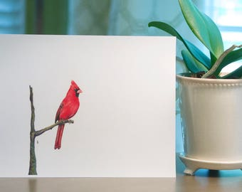 Bird Print, Wall Print, Colored Pencil Drawing, 8x10inches, Red and Black: Northern Cardinal
