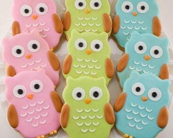 Owl Cookies - 15 Decorated Sugar Cookie Favors