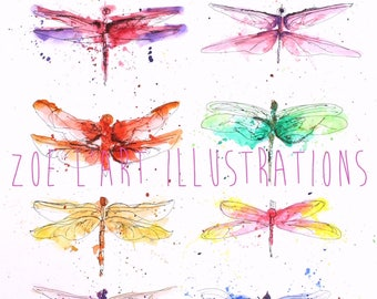 Watercolour Dragonfly Illustration