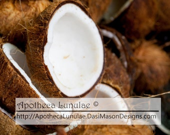 Coconut Essential Fragrance Oil