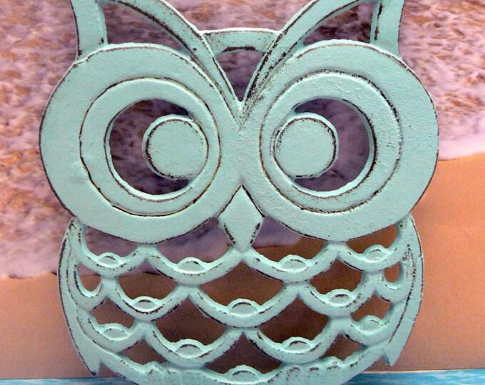 Cast Iron Owl Trivet Beach Blue Shabby Chic Woodland Kitchen Hot Plate Home Decor