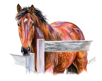 Thoroughbred Warmblood Bay Horse Art Watercolor Painting Print