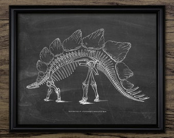Stegosaurus Skeleton Dinosaur Print - Armored Dinosaur Anatomy - Paleontology - Extinct Animal Art - Single Print #2179 - INSTANT DOWNLOAD