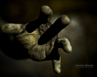 Hand | Photography | Limited edition