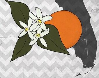 Florida - State Flower - Orange Blossom (Art Prints available in multiple sizes)