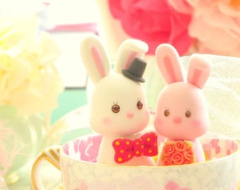 rabbits and bunny bride and groom wedding cake topper---k950