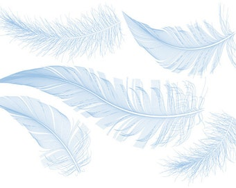 Blue bird feathers, clipart, clip art, illustration, drawing, digital art print for home decor, pillow, vector, EPS, instant download