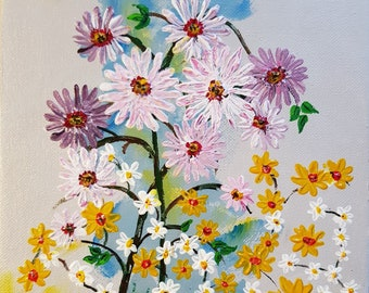 Osteospermums and Daises
