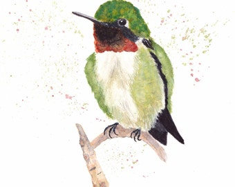 Ruby-throated Hummingbird 8x10 Watercolor Painting, hummingbird, Bird,hummingbird painting,Nature,Bird Lover,Wildlife,Animal,Print