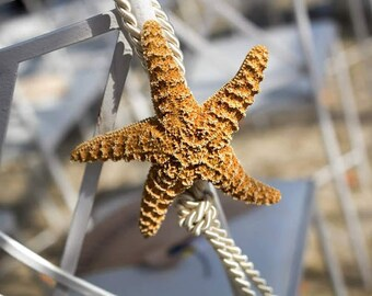 Tying the Knot Nautical Beach Wedding Aisle Decorations/ White or Sugar Starfish Rope Decor/ Classic Style Chair Hanger/ Destination/ Events