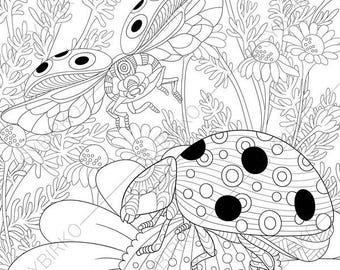 Ladybird Ladybug 2 Coloring Pages Animal Book For Adults Instant Download Print