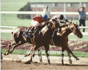 Alydar & Affirmed dueling in the 1978 Belmont Stakes