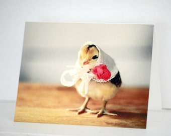 Chicken Wearing a Vintage Kerchief Card Chicks in Hats Bird In A Hat Photo Baby Animal Stationary (1)